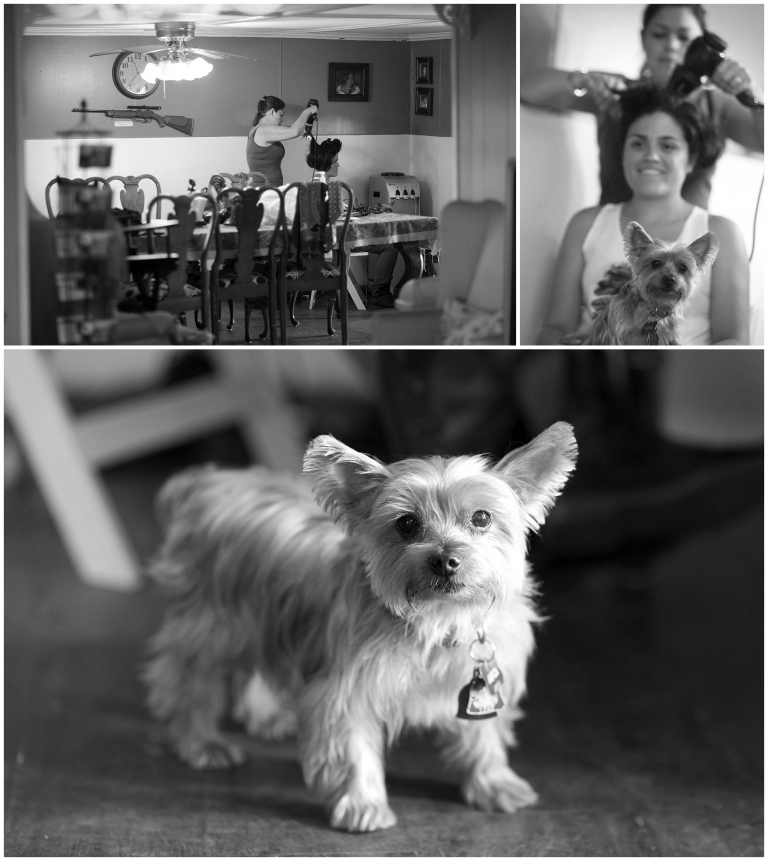 Photos of a bride getting ready and of her dog.